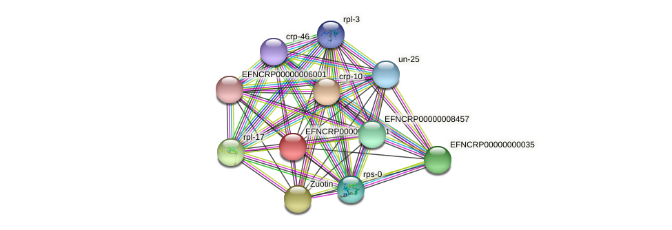 EFNCRP00000000221 protein (Neurospora crassa) - STRING interaction network