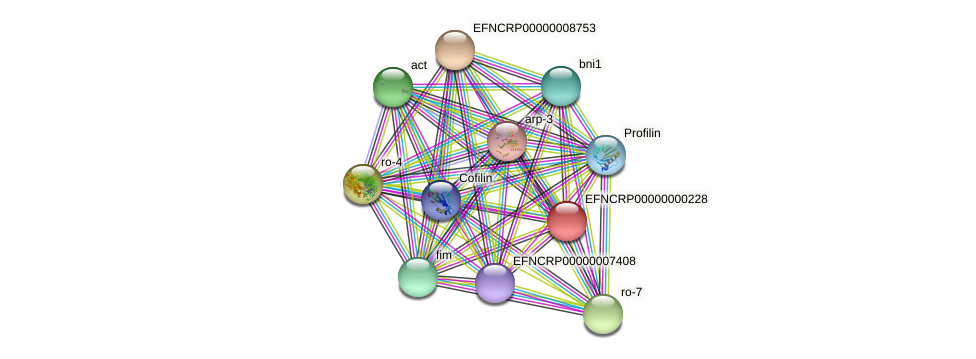 EFNCRP00000000228 protein (Neurospora crassa) - STRING interaction network