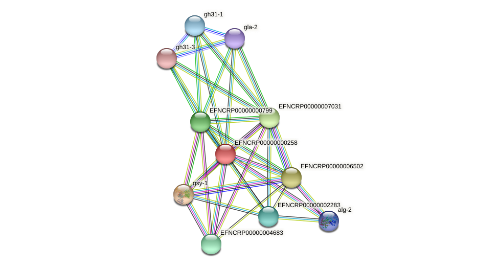 EFNCRP00000000258 protein (Neurospora crassa) - STRING interaction network