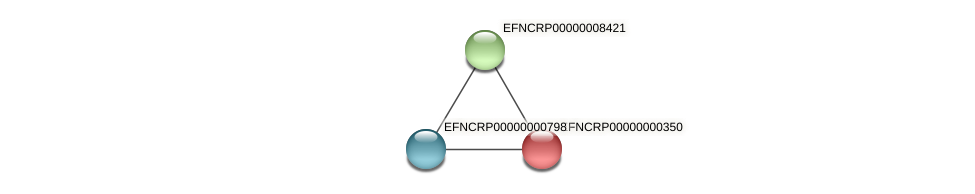EFNCRP00000000350 protein (Neurospora crassa) - STRING interaction network