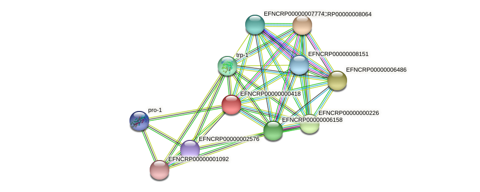 EFNCRP00000000418 protein (Neurospora crassa) - STRING interaction network
