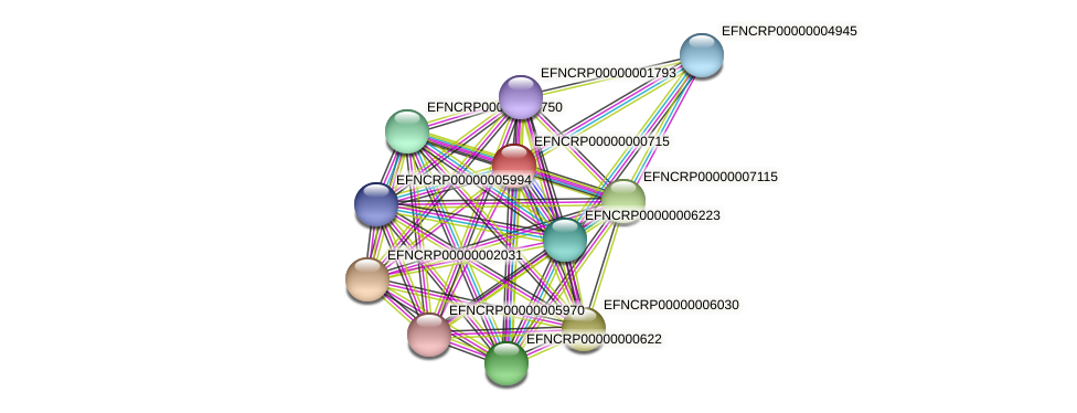 B13C5.190 protein (Neurospora crassa) - STRING interaction network