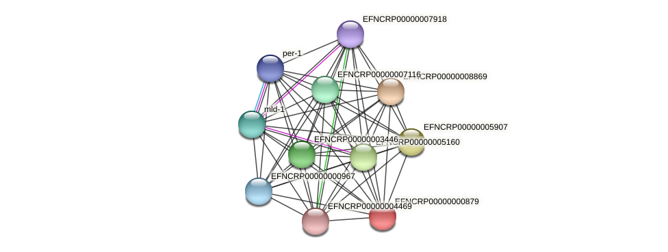 EFNCRP00000000879 protein (Neurospora crassa) - STRING interaction network