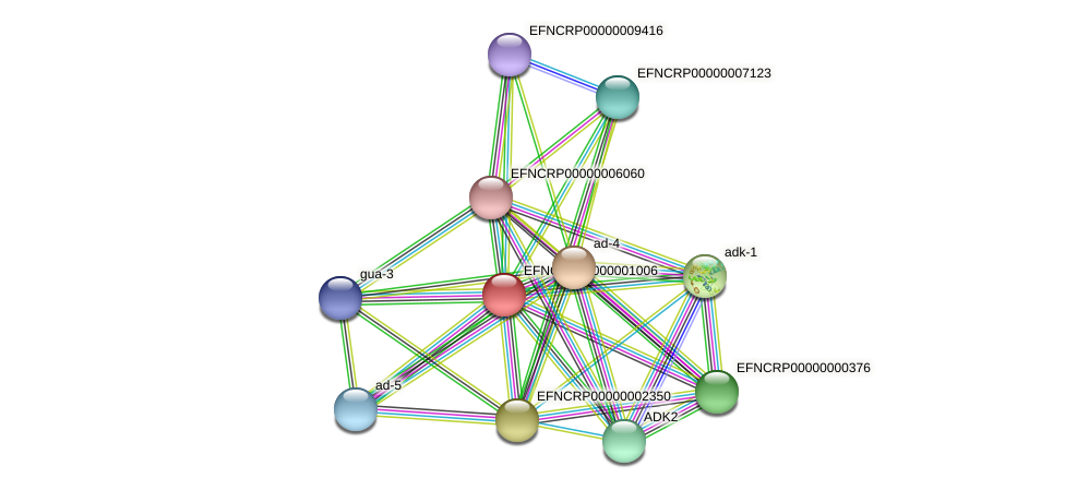 EFNCRP00000001006 protein (Neurospora crassa) - STRING interaction network
