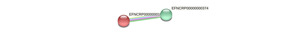 EFNCRP00000001035 protein (Neurospora crassa) - STRING interaction network