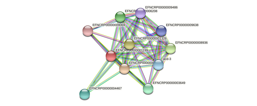 EFNCRP00000001199 protein (Neurospora crassa) - STRING interaction network