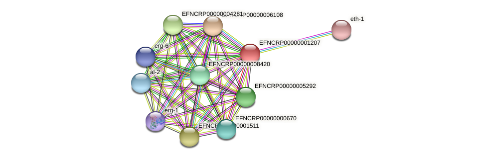 EFNCRP00000001207 protein (Neurospora crassa) - STRING interaction network