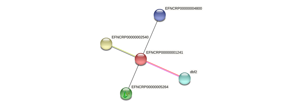 EFNCRP00000001241 protein (Neurospora crassa) - STRING interaction network