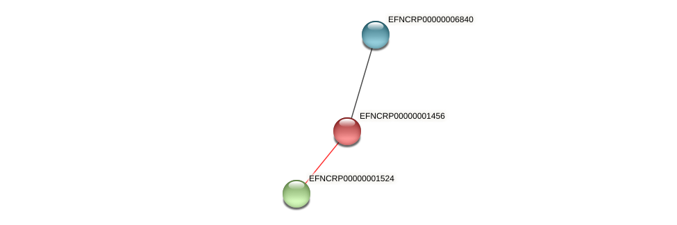 EFNCRP00000001456 protein (Neurospora crassa) - STRING interaction network