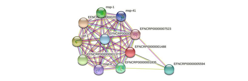 EFNCRP00000001488 protein (Neurospora crassa) - STRING interaction network