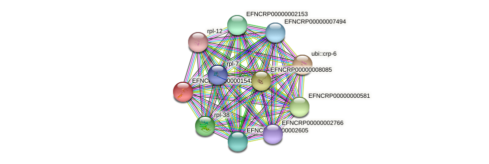 EFNCRP00000001542 protein (Neurospora crassa) - STRING interaction network