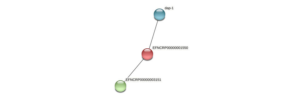 EFNCRP00000001550 protein (Neurospora crassa) - STRING interaction network