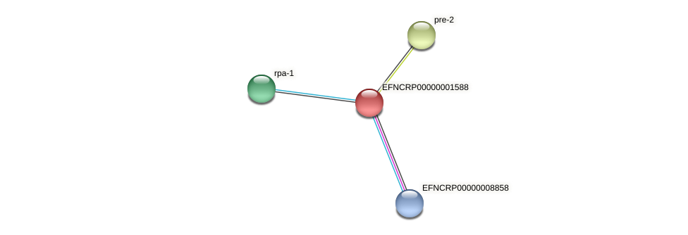 EFNCRP00000001588 protein (Neurospora crassa) - STRING interaction network