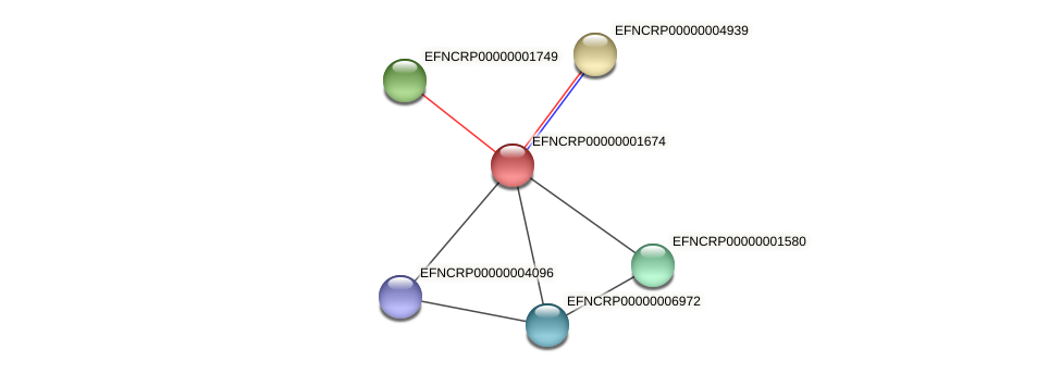 EFNCRP00000001674 protein (Neurospora crassa) - STRING interaction network
