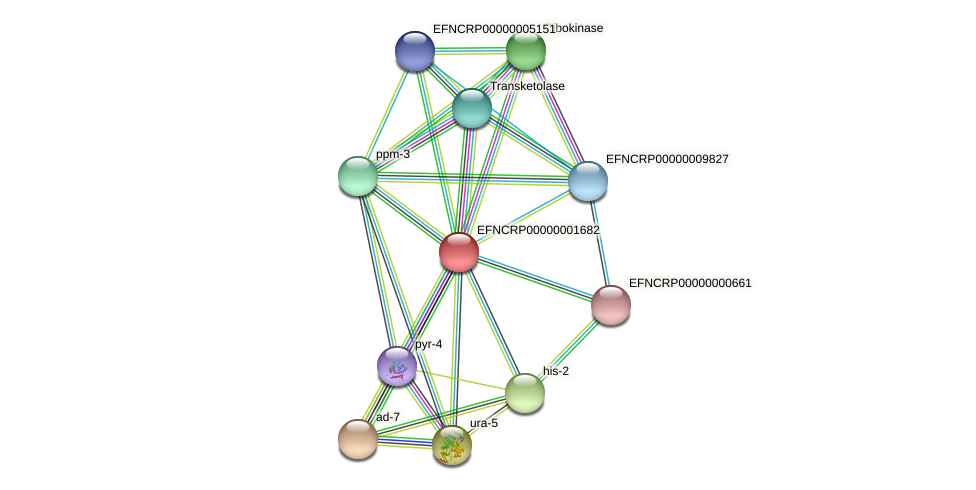 B21D9.130 protein (Neurospora crassa) - STRING interaction network