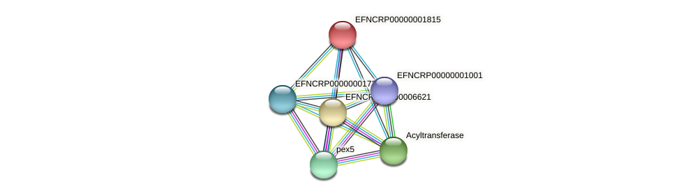 B7K22.040 protein (Neurospora crassa) - STRING interaction network