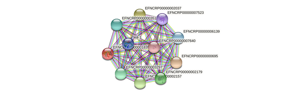 EFNCRP00000001835 protein (Neurospora crassa) - STRING interaction network