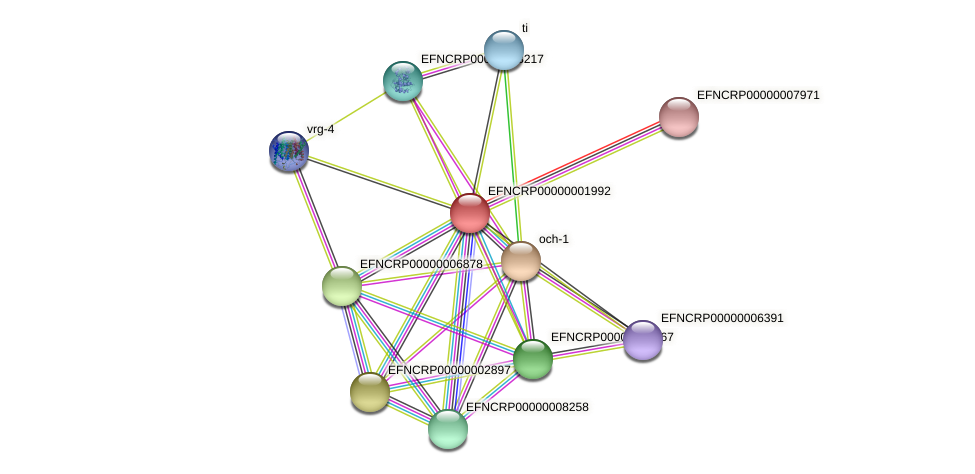 EFNCRP00000001992 protein (Neurospora crassa) - STRING interaction network