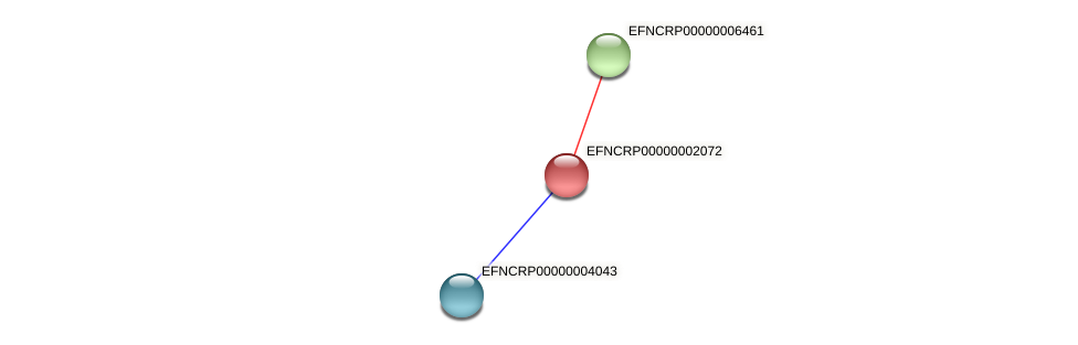 EFNCRP00000002072 protein (Neurospora crassa) - STRING interaction network