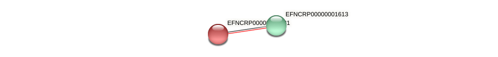 EFNCRP00000002081 protein (Neurospora crassa) - STRING interaction network