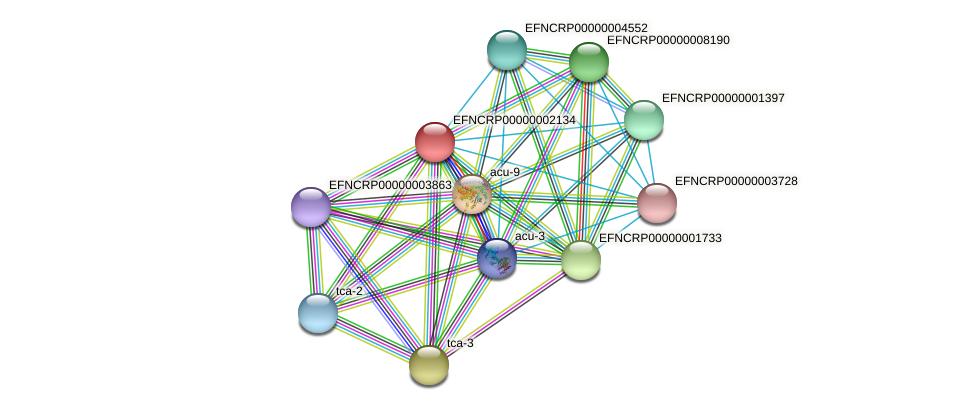 EFNCRP00000002134 protein (Neurospora crassa) - STRING interaction network
