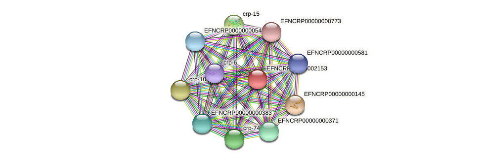 EFNCRP00000002153 protein (Neurospora crassa) - STRING interaction network