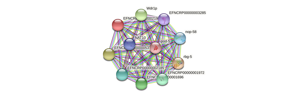 EFNCRP00000002198 protein (Neurospora crassa) - STRING interaction network