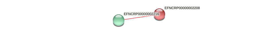 EFNCRP00000002208 protein (Neurospora crassa) - STRING interaction network