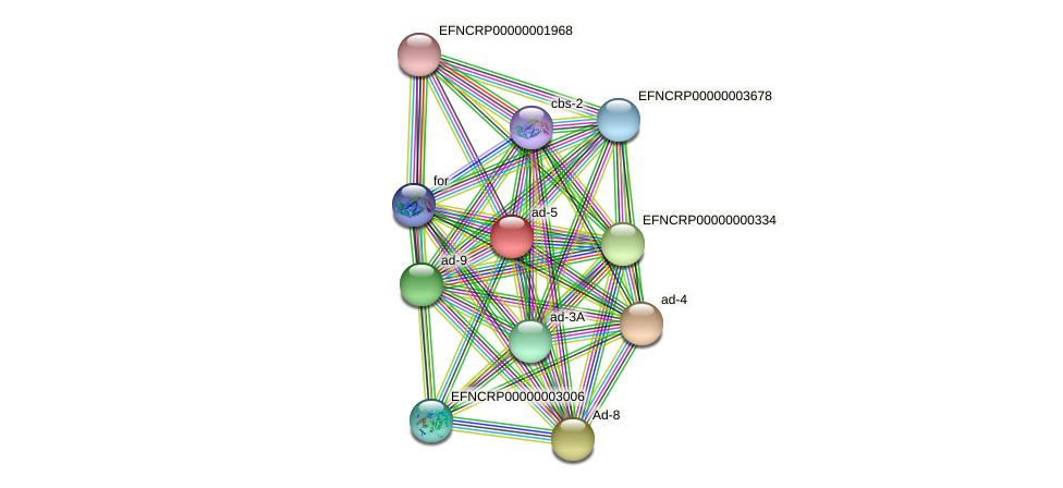 ad-5 protein (Neurospora crassa) - STRING interaction network