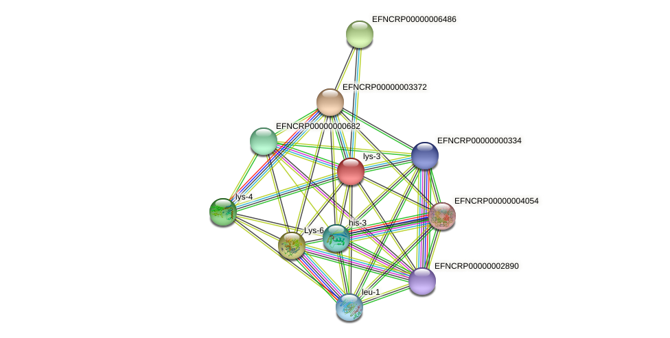 B24P7.280 protein (Neurospora crassa) - STRING interaction network