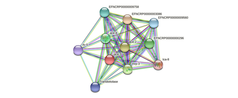B24P7.220 protein (Neurospora crassa) - STRING interaction network