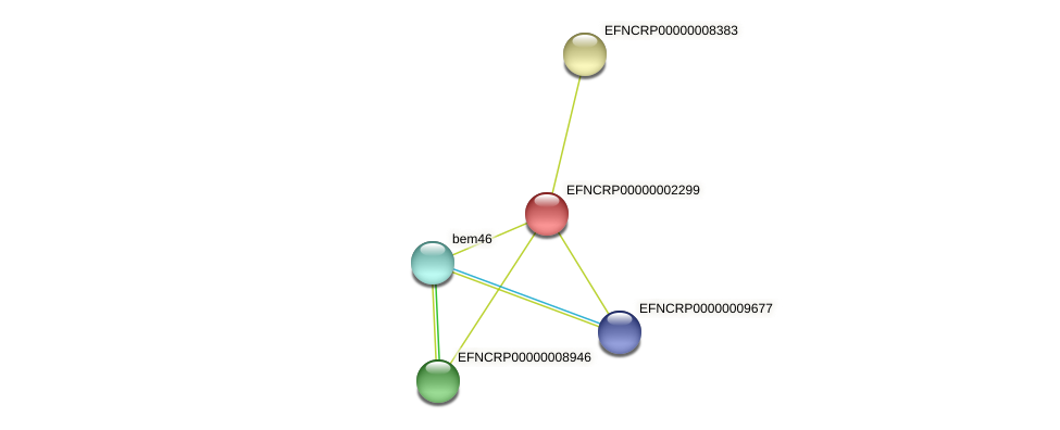 EFNCRP00000002299 protein (Neurospora crassa) - STRING interaction network