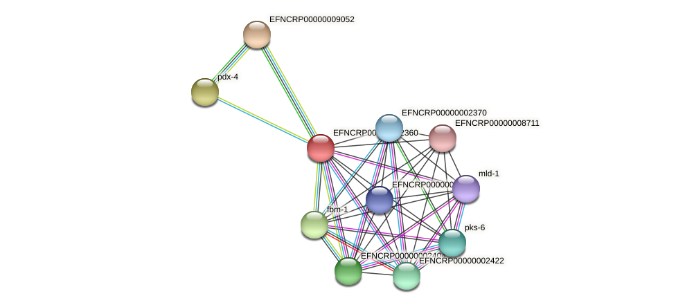 EFNCRP00000002360 protein (Neurospora crassa) - STRING interaction network