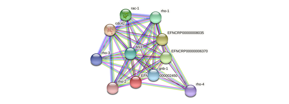 EFNCRP00000002450 protein (Neurospora crassa) - STRING interaction network