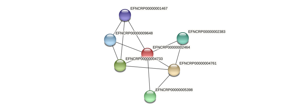 EFNCRP00000002464 protein (Neurospora crassa) - STRING interaction network