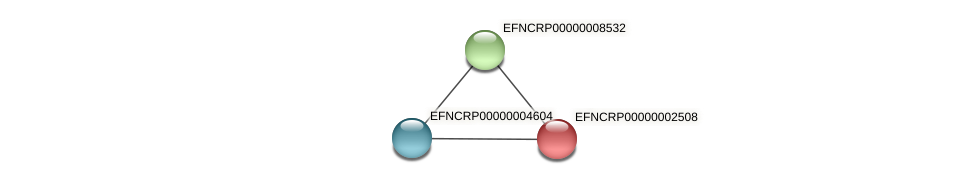 EFNCRP00000002508 protein (Neurospora crassa) - STRING interaction network
