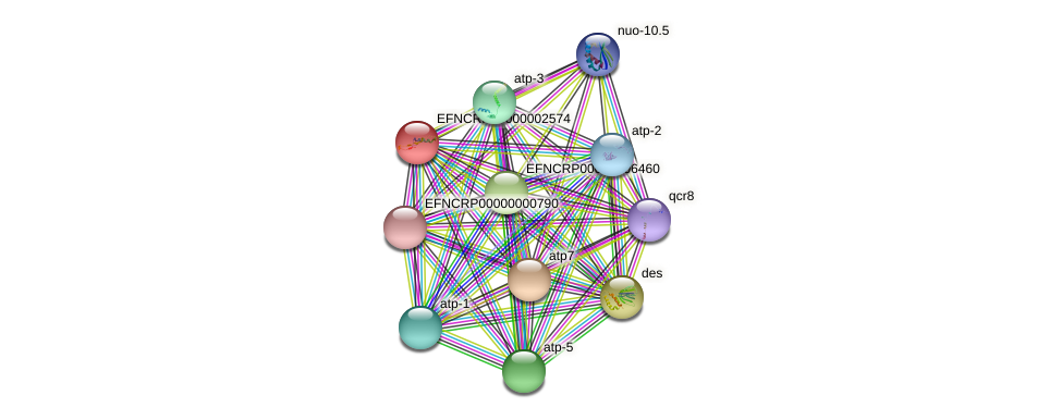 B7N14.105 protein (Neurospora crassa) - STRING interaction network