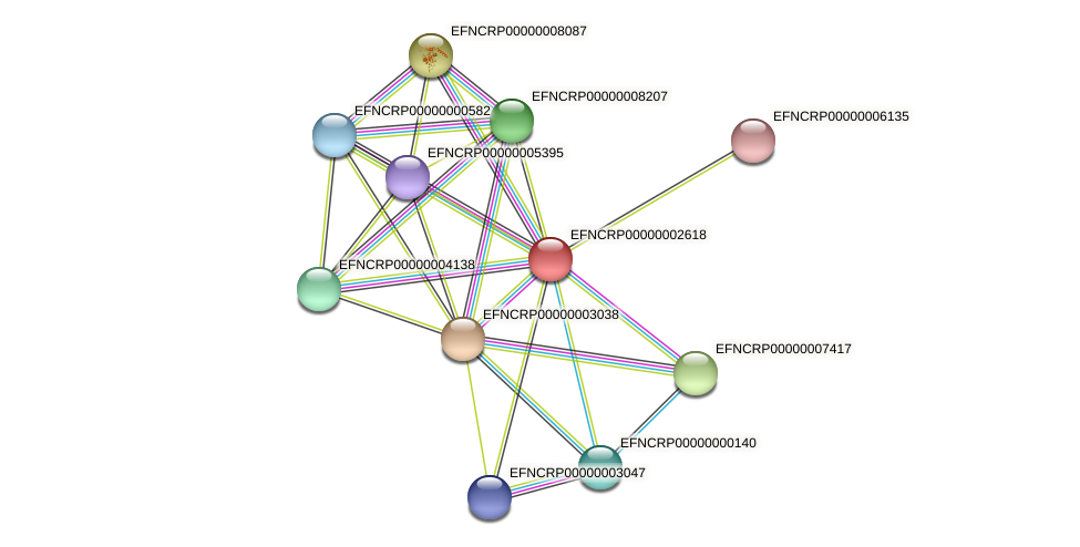 EFNCRP00000002618 protein (Neurospora crassa) - STRING interaction network