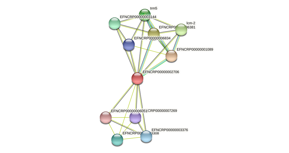 EFNCRP00000002706 protein (Neurospora crassa) - STRING interaction network