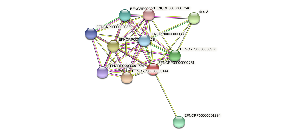 EFNCRP00000002751 protein (Neurospora crassa) - STRING interaction network