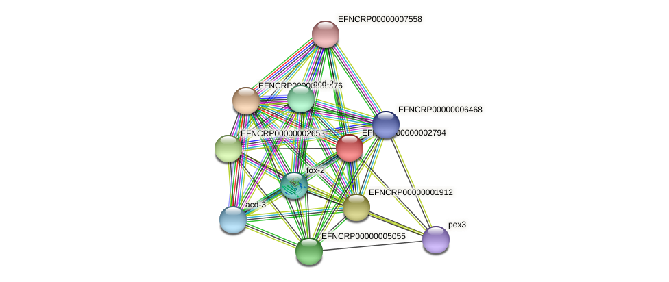 EFNCRP00000002794 protein (Neurospora crassa) - STRING interaction network