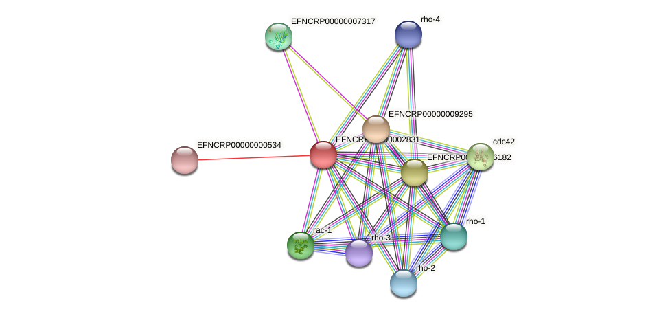 EFNCRP00000002831 protein (Neurospora crassa) - STRING interaction network