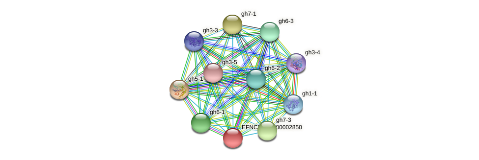 EFNCRP00000002850 protein (Neurospora crassa) - STRING interaction network