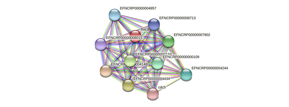EFNCRP00000002863 protein (Neurospora crassa) - STRING interaction network