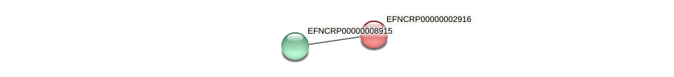 EFNCRP00000002916 protein (Neurospora crassa) - STRING interaction network