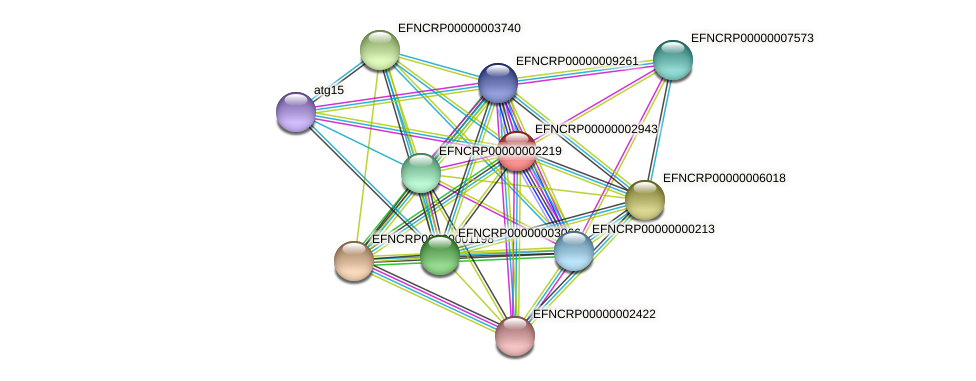 EFNCRP00000002943 protein (Neurospora crassa) - STRING interaction network