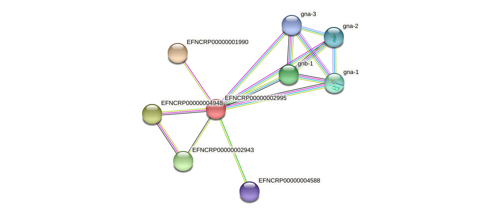 EFNCRP00000002995 protein (Neurospora crassa) - STRING interaction network