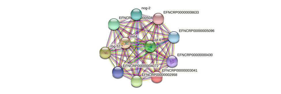 EFNCRP00000003041 protein (Neurospora crassa) - STRING interaction network