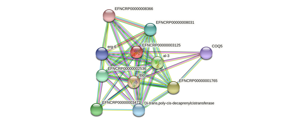 EFNCRP00000003125 protein (Neurospora crassa) - STRING interaction network