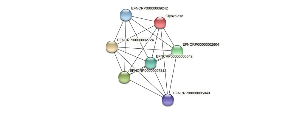 EFNCRP00000003159 protein (Neurospora crassa) - STRING interaction network